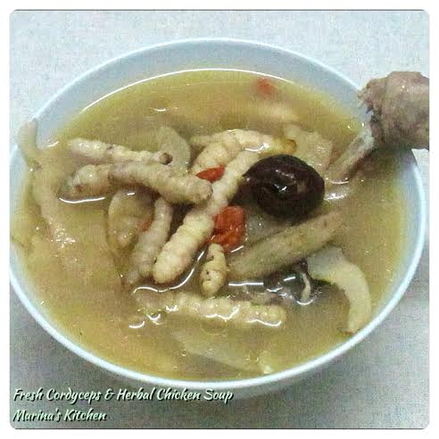 Fresh Cordyceps & Herbal Chicken Soup
